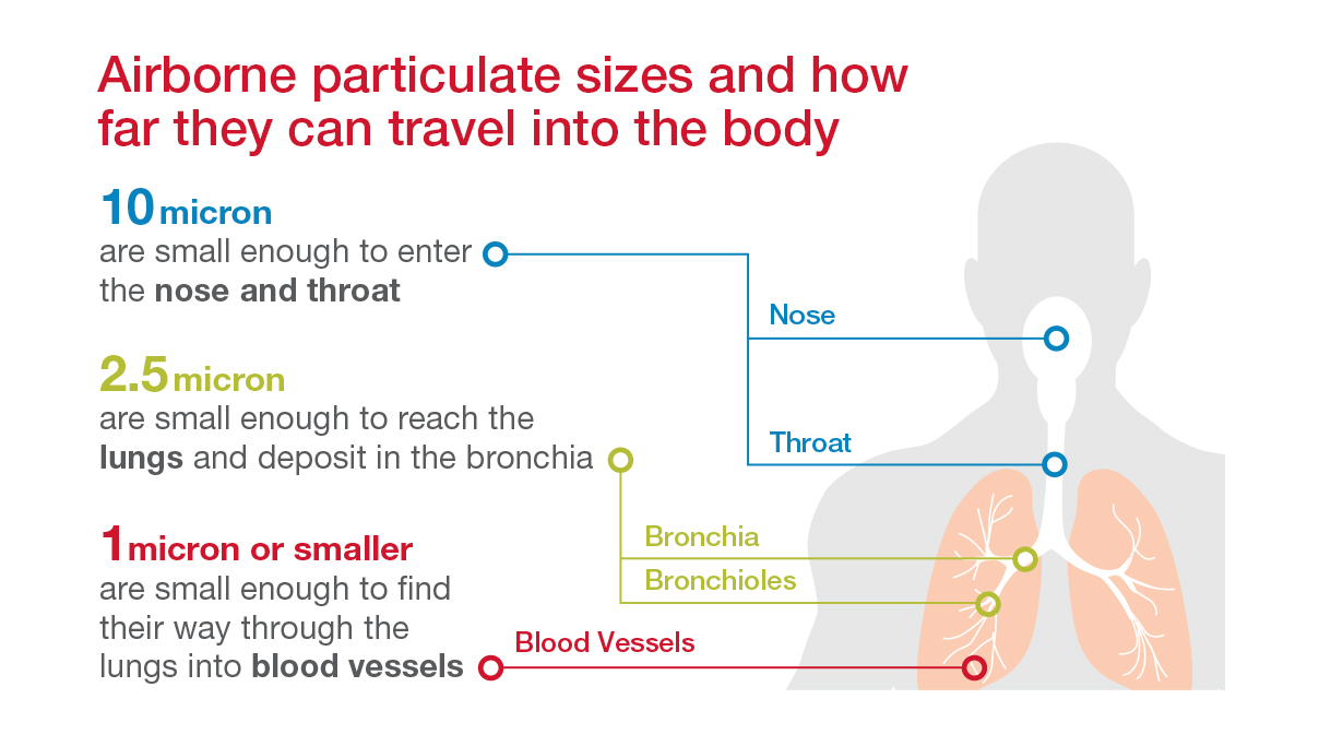 Particulate_Size_Deposit_Body_BLG