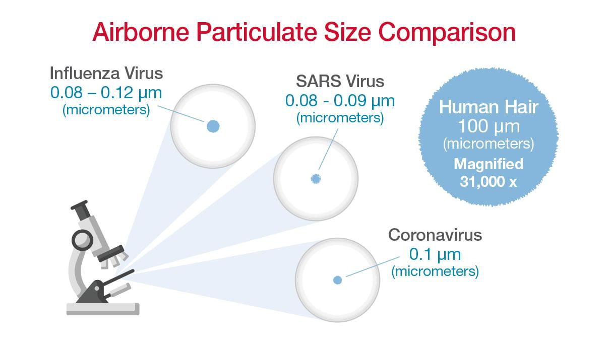 Particulate_Size_compare_BLG